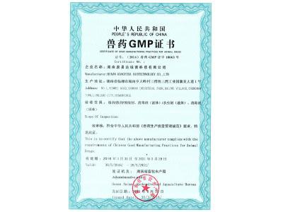 2016-新宝6官网下载GMP证书